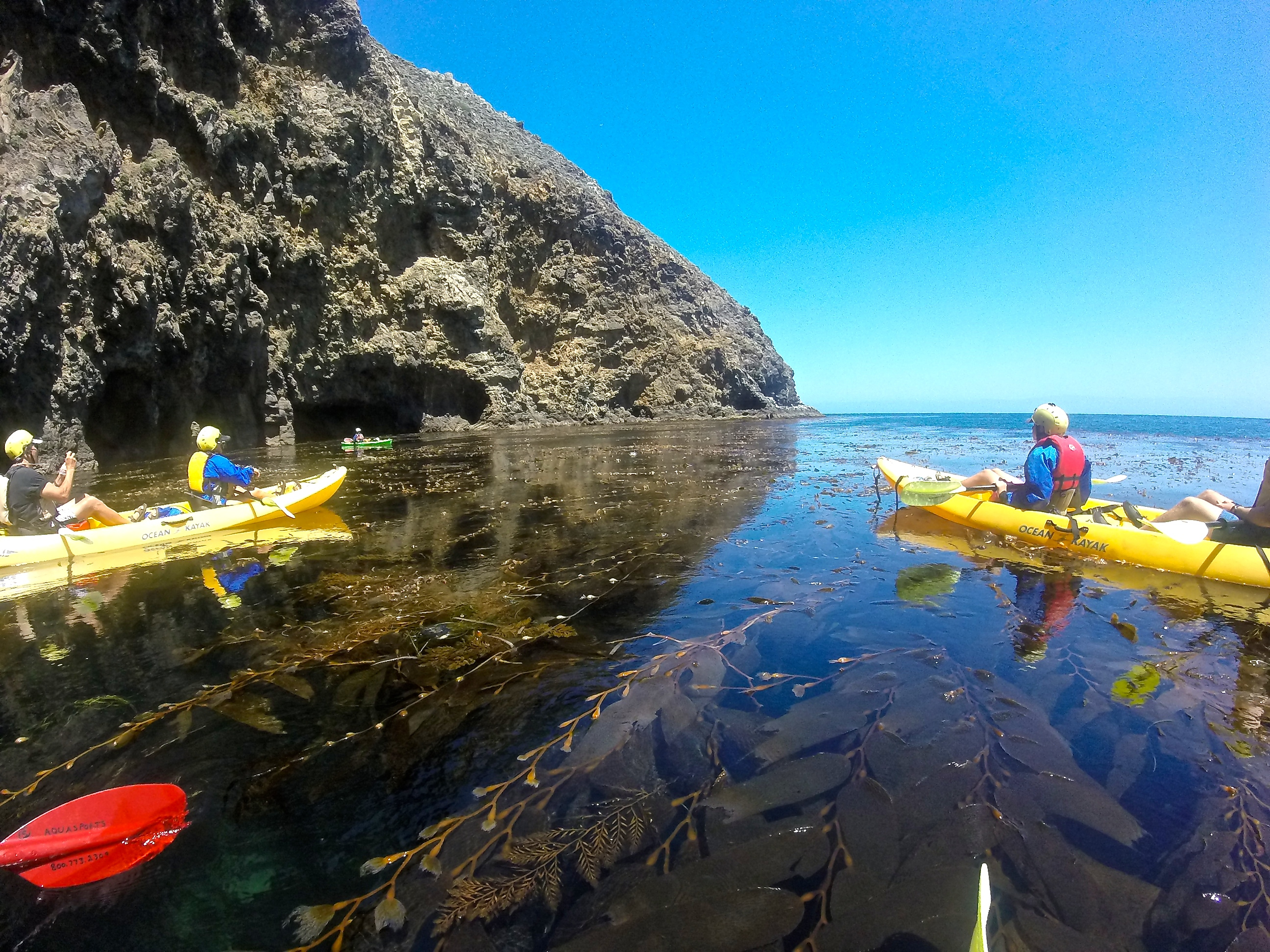 Santa Cruz Island Kayaking Tour